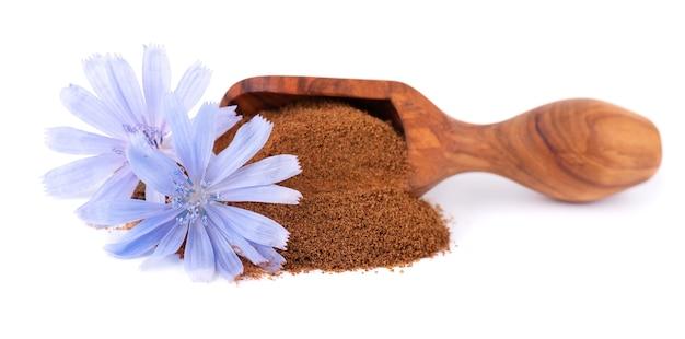 Poudre de chicorée et fleur dans une cuillère en bois, isolée sur fond blanc. cichorium intybus.