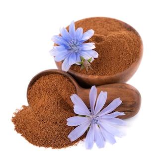 Poudre et fleur de chicorée dans un bol en bois et une cuillère isolés sur fond blanc cichorium intybus
