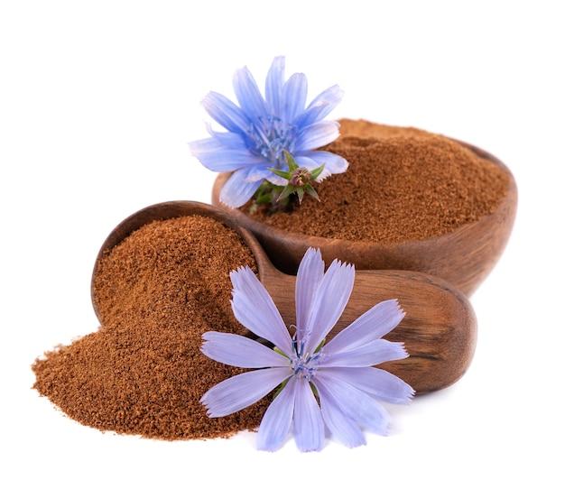 Poudre et fleur de chicorée dans un bol et une cuillère en bois, isolés sur fond blanc. cichorium intybus.