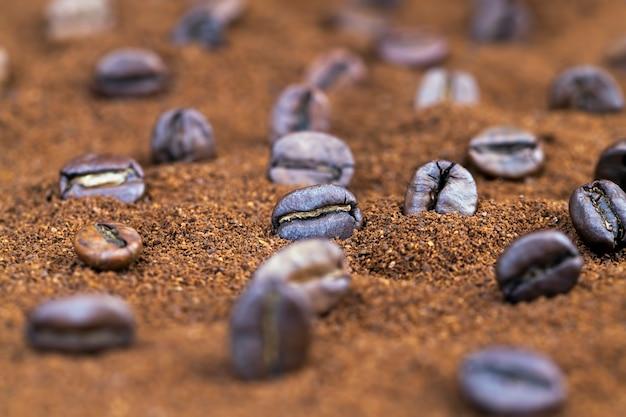 Poudre de grain de café et grains de café entiers