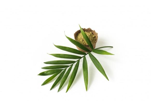 Poudre de henné pour cheveux et sourcils avec feuille de palmier verte.