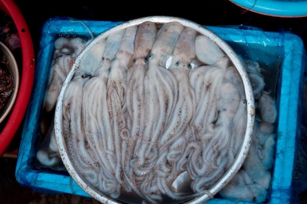 Poulpes au marché aux poissons, busan, yeongnam, corée du sud