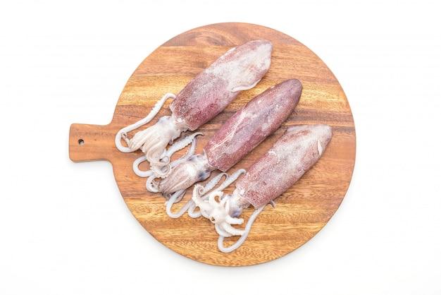 Poulpes ou calamars frais crus