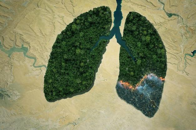 Poumons de rivière et de forêt verte avec feu dans le désert. concept de réchauffement climatique. brûler les forêts et polluer l'environnement. idée de pneumonie