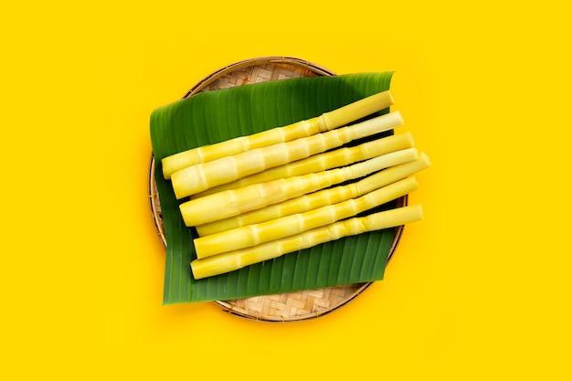 Pousse de bambou conservée dans un panier de bambou sur fond jaune.
