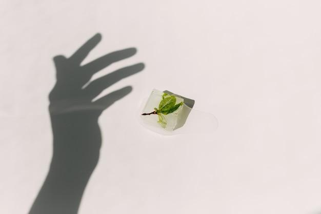 Pousse de petite plante congelée dans un glaçon