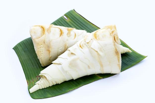 Pousses de bambou sur feuille de bananier sur blanc