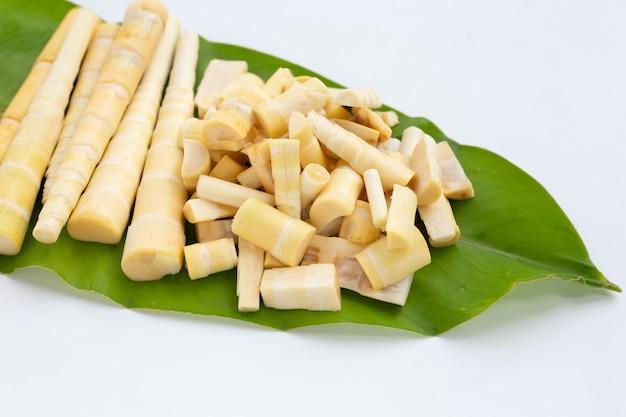 Pousses de bambou sur feuille verte sur fond blanc.