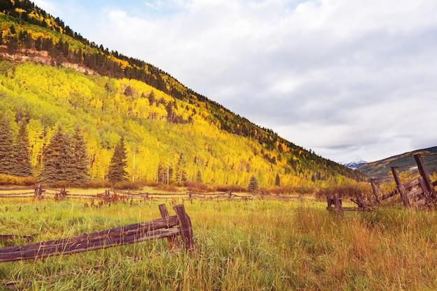 Prairie d'automne ensoleillée