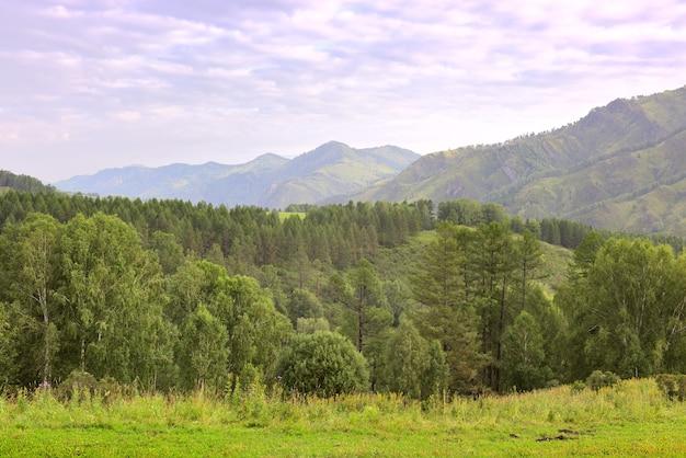 Prairie d'été sur fond de hautes montagnes sous un ciel bleu nuageux sibérie russie