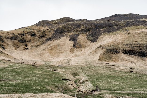 Une prairie verte avec un sillon pour la collecte de l'eau de montagne avec de l'herbe verte