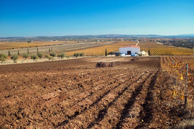 Préparation du champ avec un sol frais