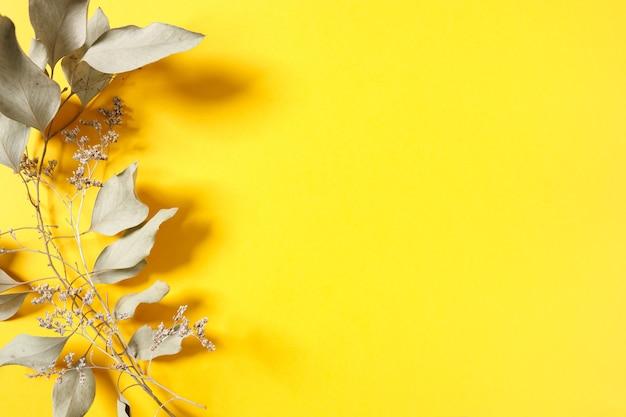 Préparation d'une future carte postale. fleurs séchées sur fond coloré