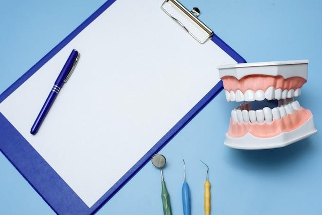 Presse-papiers bleu, modèle dentaire et instruments de dentiste sur fond bleu