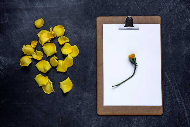 Presse-papiers avec et un pétale de rose jaune sur fond noir. la saint valentin