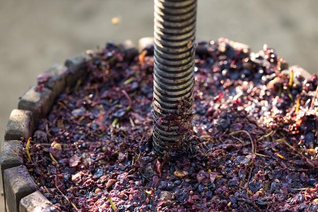 Pressoir à moût rouge et vis hélicoïdale production de vins italiens traditionnels