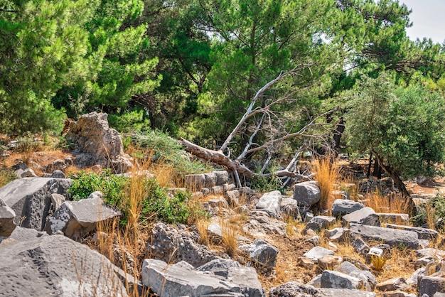 Priene ville grecque antique sur la côte ouest de la turquie