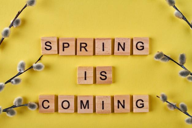 Le printemps arrive des cubes en bois. branches de saule sur fond jaune.