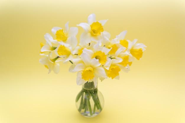 Printemps, un bouquet de jonquilles