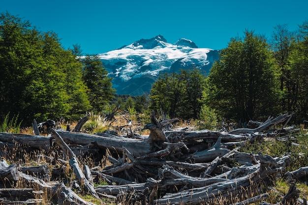 Printemps dans la montagne enneigée argentine