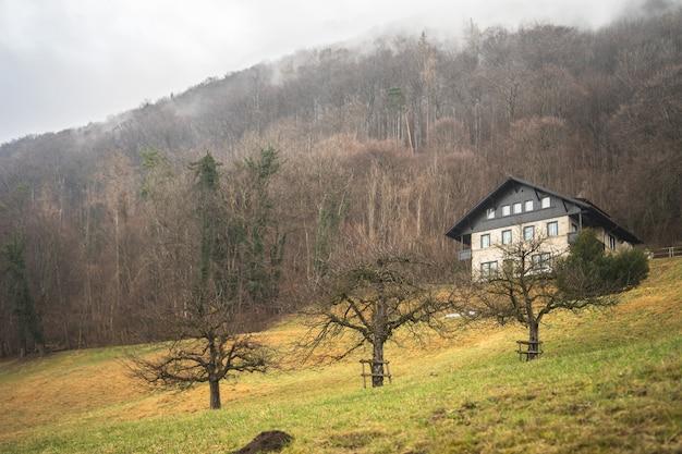 Prise de vue en contre-plongée d'une maison sur une montagne avec des arbres nus un jour de brouillard