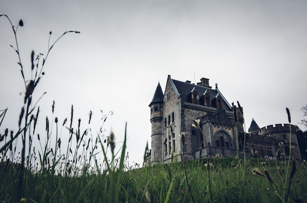 Prise de vue en contre-plongée d'un vieux beau château sur une colline herbeuse
