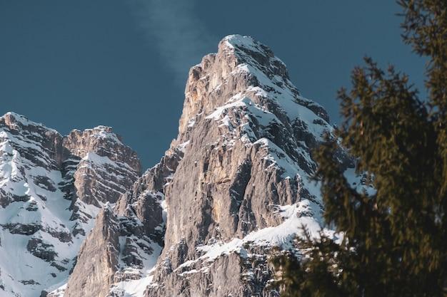Prise de vue à faible angle d'une partie d'une chaîne de montagnes avec des arbres en dessous en hiver