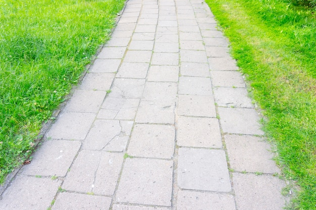 Prise de vue en grand angle de sentier en carreaux de pierre entouré d'herbe verte