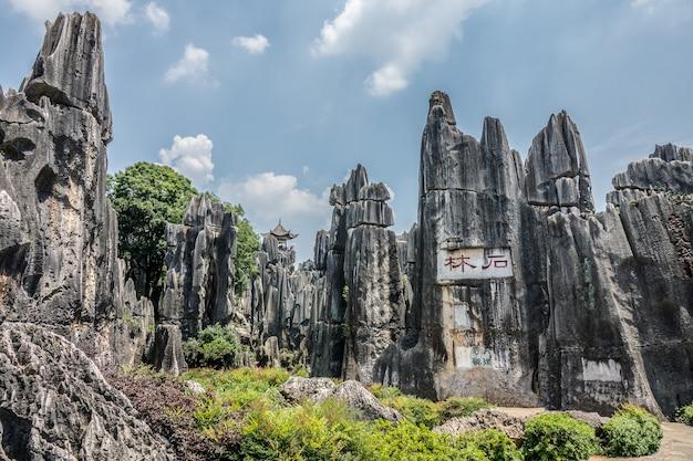 Prise de vue en grand angle de la zone panoramique de la forêt de pierre de naigu dans le parc national de kunming, chine