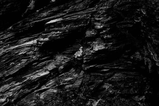 Prise de vue en niveaux de gris des motifs des belles formations rocheuses