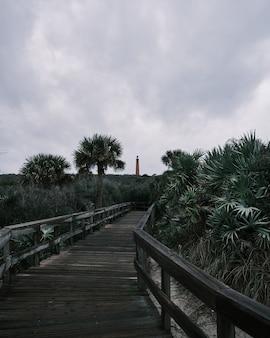 Prise de vue verticale d'un sentier en bois au milieu des arbres avec un phare au loin