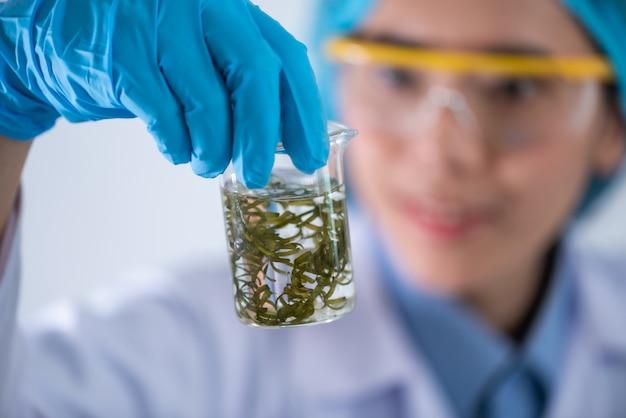 Processus de recherche sur les biocarburants en laboratoire, photobioréacteur à microalgues pour l'innovation énergétique alternative dans le laboratoire des énergies renouvelables