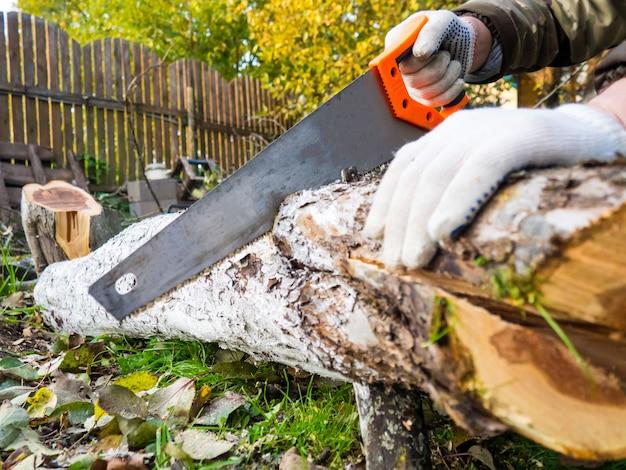 Le processus de sciage manuel d'une bûche. vu et la fin d'un arbre se bouchent. un homme coupe un tronc d'arbre avec une scie à main