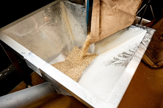 Le processus technologique de broyage des graines de malt au moulin
