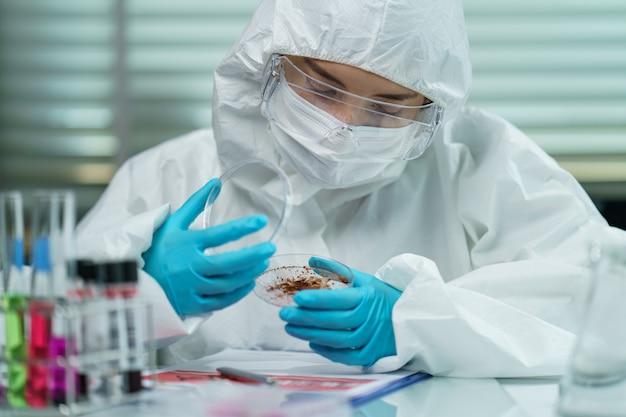 Processus de test du coronavirus: femme main dans des gants en caoutchouc bleu tenant un échantillon de virus dans une boîte de pétri en laboratoire.