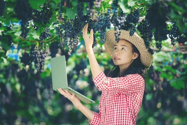 Les producteurs de raisins sont heureux de vendre des raisins du marché en ligne