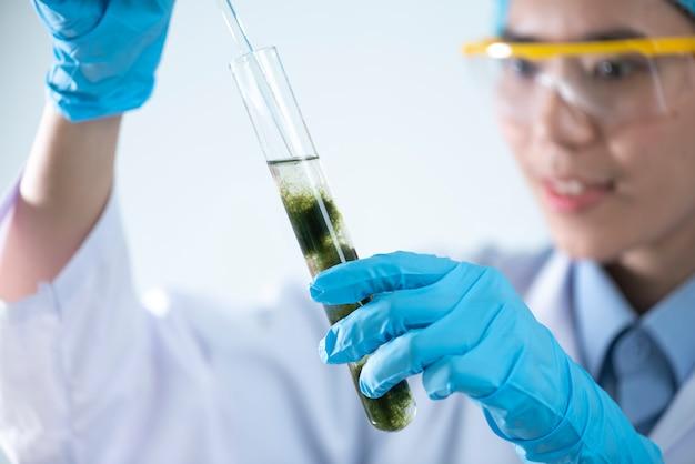 La production de biodiesel est le processus de production du biocarburant