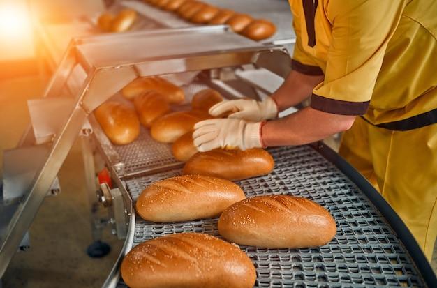 Production d'usine de boulangerie de pain avec des produits frais. production automatisée de produits de boulangerie.