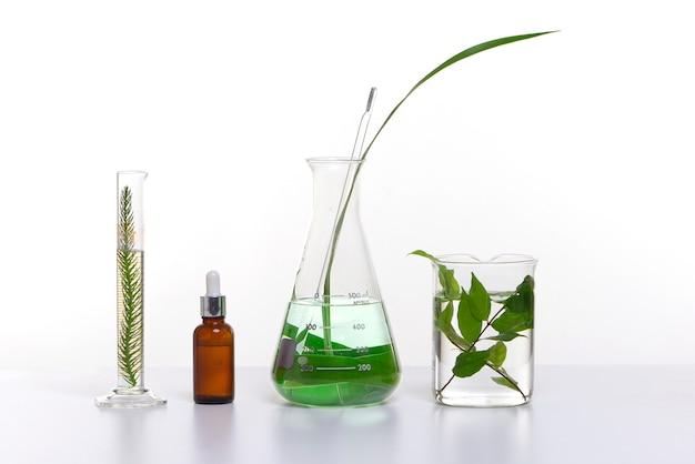 Produit cosmétique de beauté naturelle avec des ingrédients à base de plantes, gros plan