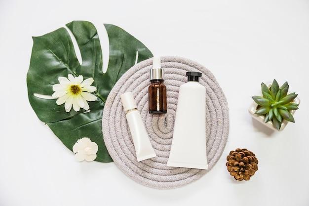 Produit cosmétique et bouteille d'huile essentielle sur caboteur avec fleur; feuille; pomme de pin et cactus