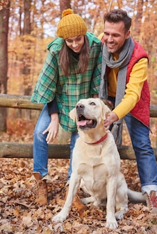 Promenade d'automne avec un chien mignon