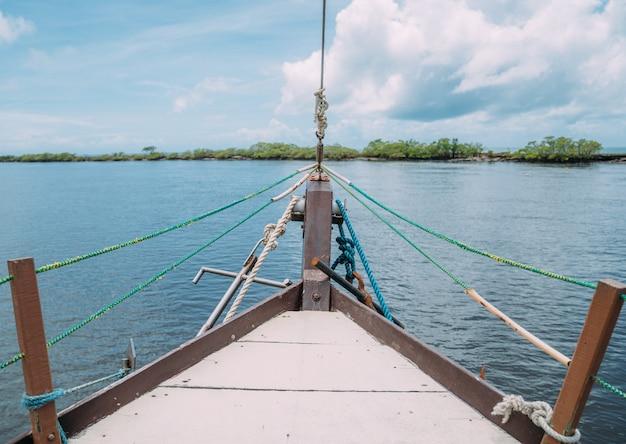 Promenade en bateau à travers les mangroves au brésil