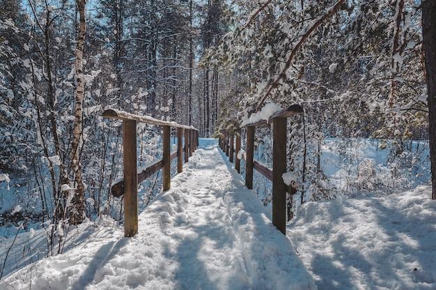 Promenade en bois couverte de neige et un pont sur une petite rivière dans une forêt mixte.