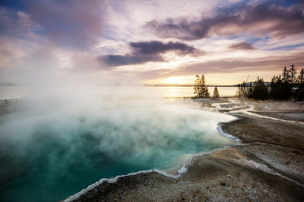 Promenade en bois le long des champs de geyser dans le parc national de yellowstone, usa