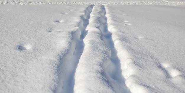 Une promenade dans la forêt d'hiver. des arbres enneigés et une piste de ski de fond. belles routes et sentiers forestiers insolites. beau paysage d'hiver.