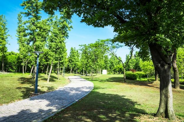 Promenade dans un magnifique parc de la ville
