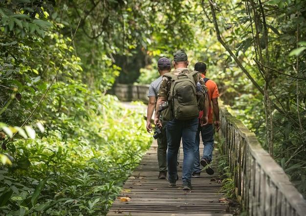 La promenade dans le parc national de niah au sarawak en malaisie, à pied par des touristes, derrière trois personnes marchant