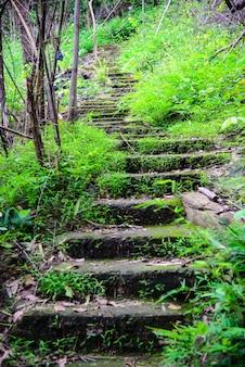 La promenade jusqu'à la colline fait de ciment