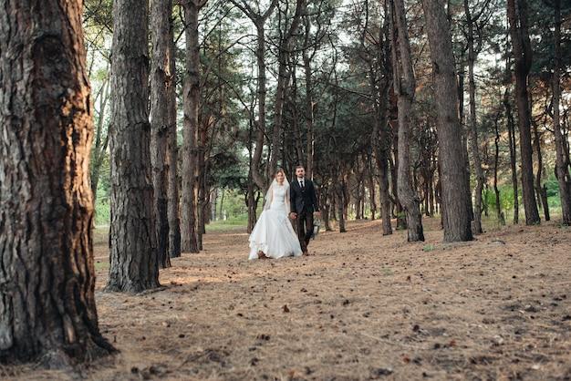 Promenade des mariés à travers la forêt d'automne en octobre
