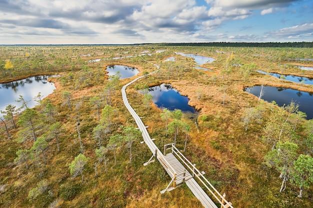 Promenade en tourbière surélevée, vue d'en haut. parc national de kemeri en lettonie. automne